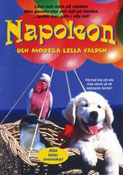 Napoleon - Den Modiga Lilla Valpen