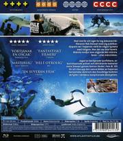 Sharkwater (Blu-ray)