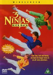3 Ninjas Kick Back (ej svensk text)