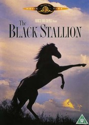Black Stallion (ej svensk text)