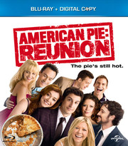 American Pie - Reunion (Blu-ray) (Begagnad)