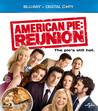 American Pie - Reunion (Blu-ray) (Begagnad)